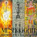MESHUGGAH / Destroy Erase Improve