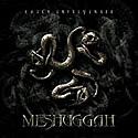 MESHUGGAH / Catch33
