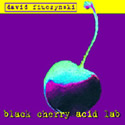 DAVID FIUCZYNSKI / Black Cherry Acid Lab