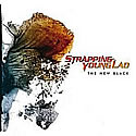 STRAPPING YOUNG LAD / The New Black