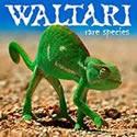 WALTARI / Rare Species